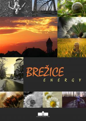 Naslovnica za Brežice Energy